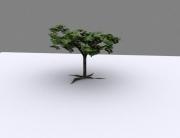 Treerendermax1